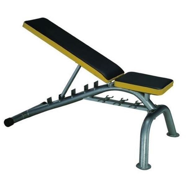 Picture of Multi use Sit Up Bench 109