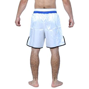 Picture of Boxing Short Blue/White