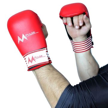 Picture of Karate Gloves