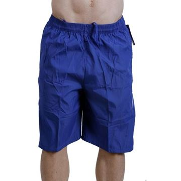Picture of Classic Swimming Short  - DBlue