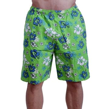 Picture of Swimming Short - Stained Green