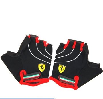 Picture of Ferrari Gloves FLKA56584