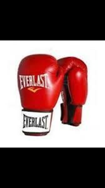 Picture of Boxing Gloves Everlast