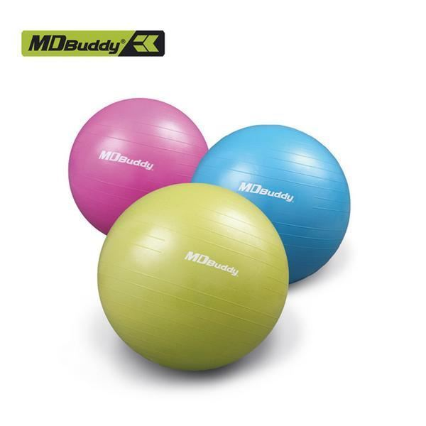 Picture of Gymball with Hand Pump 55,65,75 MDBuddy